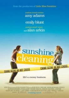 Чистка до блеска / Sunshine Cleaning (2008) DVDRip 700mb Профю перевод