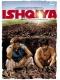 У любви нет причин / Ishqiya (2010) HDRip
