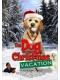 Собака, спасшая Рождество / The Dog Who Saved Christmas Vacation (2010) DVDRip / ENG