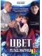 Скачать сериал Цвет пламени (2010) DVDRip / 500 Mb